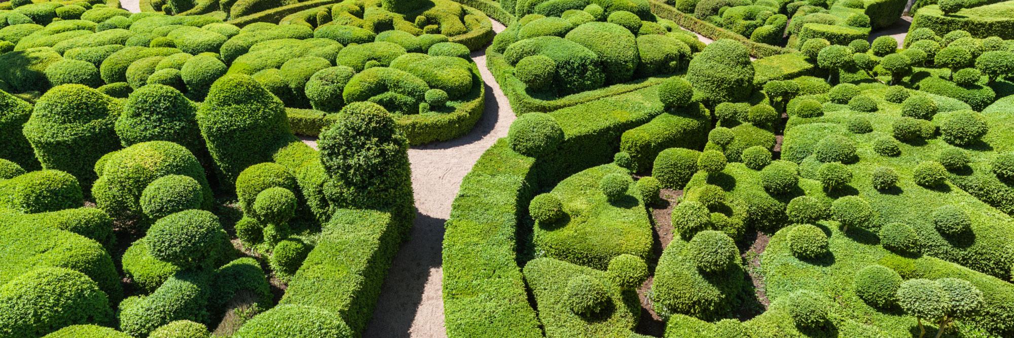 Detail Des Buis Du Jardin De Marqueyssac Reserve De